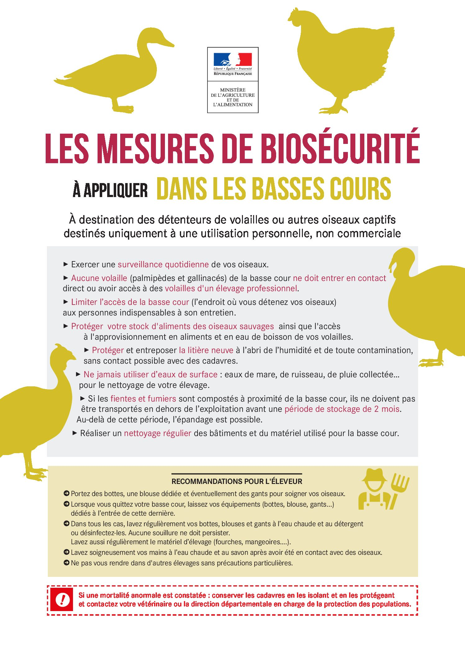 Influenza aviaire hautement pathogène