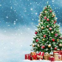 12 décembre 2021 – Marché de noël